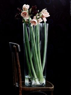 Oversized Glass Vase.