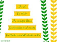 5 produits naturels pour faire le ménage- échos verts