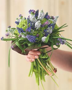 Grape hyacinth and forget-me-not spring bouquet