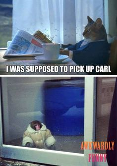ROFL, this is funny Goddamnit Carl