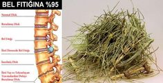 Get rid of lumbar hernia with completely natural products - - Pizza Ingredients, Aspirin, Brunch Party, Health And Beauty, Detox, Herbalism, The Cure, Vitamins, Food And Drink
