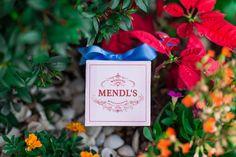 Grand Budapest Hotel - Mendl's Ring Box