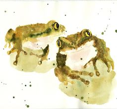 watercolor frogs