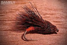 Hotspot streaking caddis #10