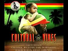 CULTURAL VIBES VOLUME 1 - OUT NOW!