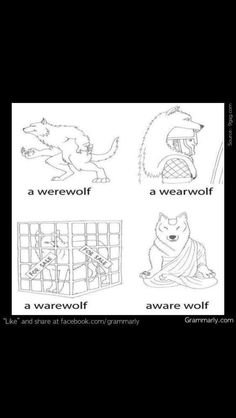 Funny pictures about Punny Wolf. Oh, and cool pics about Punny Wolf. Also, Punny Wolf photos. Funny Shit, The Funny, Funny Stuff, That's Hilarious, Hilarious Animals, Crazy Funny, Daily Funny, Worlds Funniest Memes, World Funniest Joke