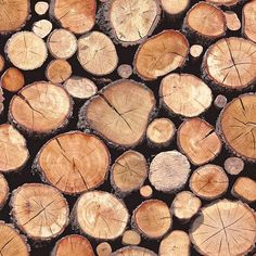 Tesco direct: Stacked Logs Wallpaper - Natural - 97710