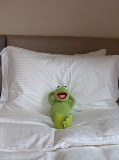 Gotta love Kermit
