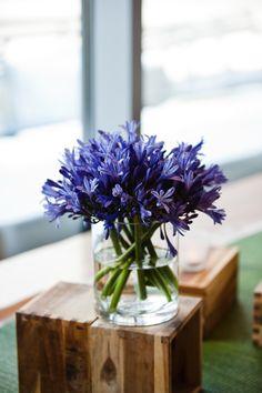Portage Bay Cafe, South Lake Union, Seattle, WA: agapanthus reception arrangements