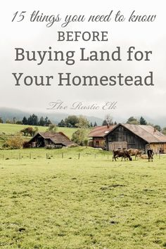 Homestead land - 20 Tips to Find the Perfect Homesteading Land – Homestead land Homestead Land, Homestead House, House With Land, Garage House Plans, Home Buying Tips, Urban Homesteading, Farms Living, How To Buy Land, Small Farm