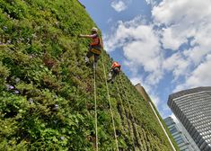 """London's largest Living Wall will """"combat flooding"""""""