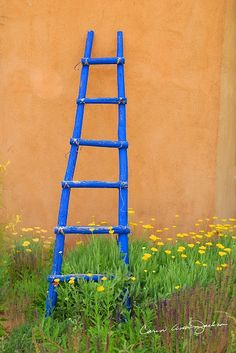 B-Assigned-Ghost Ranch Blue Ladder.
