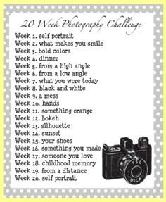 20 week photo challenge http://www.astepinthejourney.com/2011/07/photography-challenge.html
