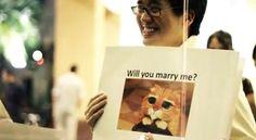 Maneras geeks de declarar el amor. ¿Alguno de usted ha hecho algo semejante?