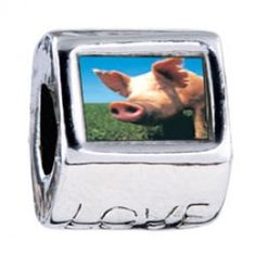 Piggy Face Photo Love Charms  Fit pandora,trollbeads,chamilia,biagi,soufeel and any customized bracelet/necklaces. #Jewelry #Fashion #Silver# handcraft #DIY #Accessory