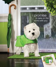 love this add, so cute! great photoshopping.