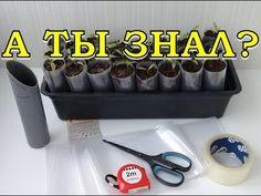Summer House Garden, Home And Garden, Clover Flower, Farm Gardens, Hydroponics, Garden Design, Diy And Crafts, Flowers, Youtube
