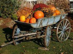 THIS Wagon!!!