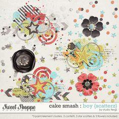 Cake Smash: BOY{scatterz} by Studio Flergs