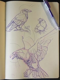 ideas for beginners Raven sketches Visit our art& here . Shipping free and quick Raven sketches Visit our art& here . Shipping free and quick Animal Sketches, Drawing Sketches, Drawing Ideas, Drawing Art, Sketching, Bird Drawings, Animal Drawings, Pencil Drawings, Fantasy Kunst