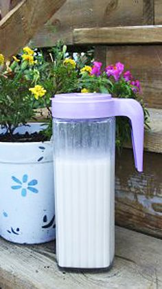 Make your own fresh coconut and cashew nut milk - it's only got 3 ingredients and none of them are sugar! This dairy free beverage will refresh you, and can be enjoyed hot or cold. Lactose Free Recipes, Coconut Recipes, Milk Recipes, Cashew Milk, Cashew Butter, Cooking Oil Filter, Cooking Brussel Sprouts, Cooking Jasmine Rice, Smoothie Drinks