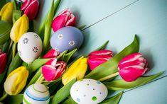Indir duvar kağıdı Paskalya, Lale, bahar çiçekleri, boyalı yumurta, mavi kartları, Paskalya dekorasyon
