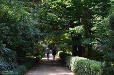 Sidewalk, World, Naturaleza, Places, Fotografia, Side Walkway, Sidewalks, Pavement, Walkways