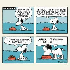 Breakfast with Snoopy. I feel your pain Snoopy Snoopy Cartoon, Snoopy Comics, Peanuts Cartoon, Peanuts Snoopy, Peanuts Comics, Snoopy Love, Snoopy And Woodstock, Ewok, Old Cartoons