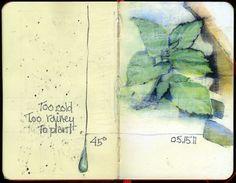 Barbara Weeks #art #journal #sketchbook