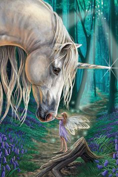 Fairy Whispers Canvas Art by Lisa Parker | iCanvas