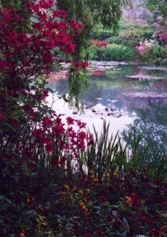 Barbara Sandson: Monet's Garden, No. 1