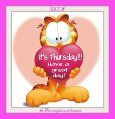 It's Thursday Have A Great Day garfield thursday thursday quotes happy thursday thursday quote happy thursday quote Happy Thursday Morning, Happy Thursday Quotes, Thursday Humor, Good Morning Happy, Good Morning Greetings, Morning Wish, It's Thursday, Wednesday, Tuesday