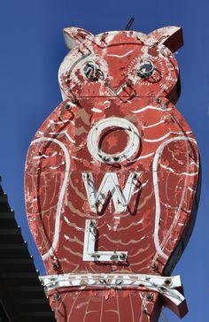 Vintage Owl Neon Sign