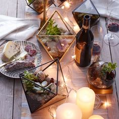 These geometric terrariums are great for showcasing air plants, succulents or cacti. Make a living diorama for your dresser or a conversation piece for your benchtop.