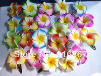 50 mixed color Foam Hawaiian Plumeria flower Frangipani Flower bridal hair clip 4.5cm