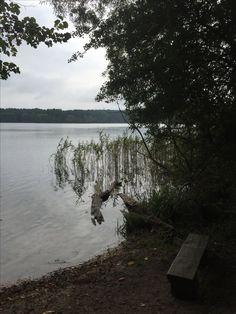 Feldberg/Mecklenburgische Seenplatte