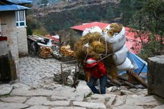 A sherpa carrying a ridiculous load...there were so many of these guys all over the mountain and they weren't nearly as out of breath as we were! #travel #nepal