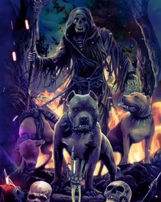Hell Hounds ( Cães do Inferno ) Fantasy Kunst, Dark Fantasy Art, Dark Art, Skull Wallpaper, Marvel Wallpaper, Grim Reaper Art, Motion Images, Mythical Creatures Art, Animated Cartoon Characters