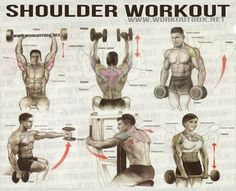 Shoulder Workout - Healthy Fitness Workout Arms Back Sixpack Ab - FITNESS HASHTAG: