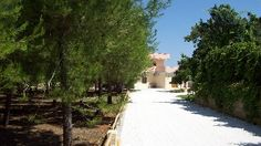 Bed and Breakfast > Italy - Puglia > Vignacastrisi;  Additional information:  Vignacastrisi is located on the south-east side of the Salento peninsula at about 2,5 km from the sea of Castro Marina, and has a favourable position to reach such cities of art as Otranto, Lecce, Leuca, Gallipoli.  About B Owners/Managers:  B Giada offers you a pleasant stay providing every kind of comfort. 5 rooms with 10 beds available throughout the year.