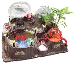 wild science fantasy island home for triops & ants