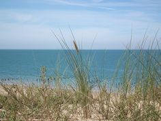 Dune aux Saumonards, Boyardville (Ile d'Oléron)    Photo de Cobber17  #oleron #charentemaritime