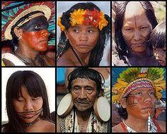 DA SÉRIE XAMANISMO - Sugestão de leitura. Povos indígenas do Brasil – Wikipédia, a enciclopédia livre