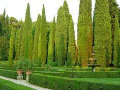 jardim italiano - Pesquisa Google