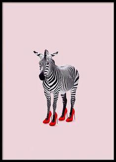 Zebra Heels als Premium poster door Jonas Loose Zebra Kunst, Zebra Art, Zebra Wallpaper, Zebra Illustration, Zebra Heels, Animal Categories, Animal Posters, Art Posters, Photo Wall Collage