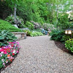 Behind the private driveway is a blackstar gravel path for Low maintenance gravel garden