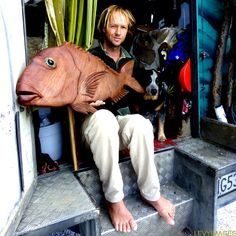 The Flying Tortoise: Todd And His Tiny House On Wheels...