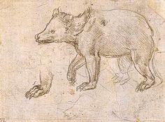 Leonardo Da Vinci-Studien eines BeWalking