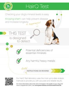 How to find out if there is something missing in your dog's diet One of the most common questions I...