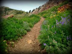 Hiking the Ben Lomond Trail, Liberty, Utah.  www.mountainluxury.com